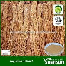 angelica root extract angelica extract powder angelica extract