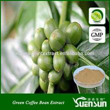 free sample green coffee bean extract powder chlorogenic acid green coffee extract