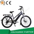 Populaire vélo électrique avec fixe vitesse brushless moteur électrique vélo
