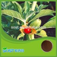100% Natural herb extract ashwagandha extract 5% withanolides ashwagandha leaves powder