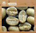 biologico arabica caffè verde