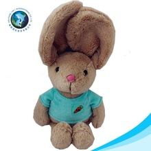 Customize rabbit with carrot plush easter bunny