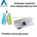 Portátil 600 mg de ozono filtro de aire y purificador de agua