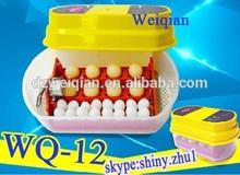 best price wq-12 egg incubator used, egg incubator for sale,used chicken egg incubator for sale