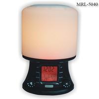 China Manufacturers natural sound wake up light LED Lamp radio