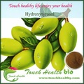Extrato de folha de oliveira / 100% antioxidantes naturais Hydroxytyrosol