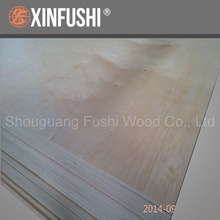 birch plywood export to Amercian
