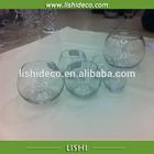 High quality glass fish tank