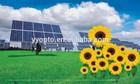 Garde A Polysilicon Solar Panel Factory Direct Pre Watt Solar Panel USD 0.56 With TUV /CE/RHOS