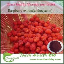 ISO&HACCP Anthocyanidins Blaeberry P.E.