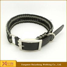 wholesale glow in the dark dog collar belt
