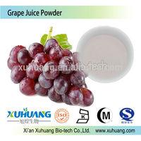 Halal,Kosher,ISO certified Natural Grape Juice powder