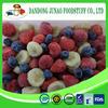Organic fruit frozen mixed fruit