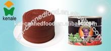 seasoning tinned tomato paste to tomato saucee 70---3000g