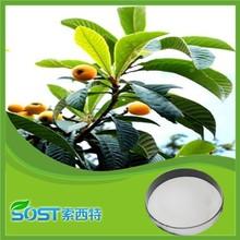 Top quality 98% corosolic acid loquat leaf extract