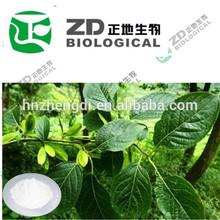 Pérdida de peso eucommia extracto/gutta extracto de los ácidos clorogénico en polvo