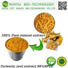 100% natural of Turmeric root extract Bulk powder 98% by HPLC