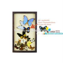 FOUSEN(042) Nature& Art natual home decoration supplier artwork