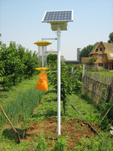 solar powered insect killer widly used in paddy land/pear tree/factory/vegetable garden