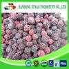 Bulk Frozen Blackberry in Organic fruit