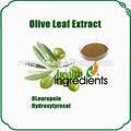 2014 100% nautral antioxidante hidroxitirosol a partir de folhas de oliveira extrato