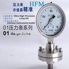 vacuum electric contact pressure gauge