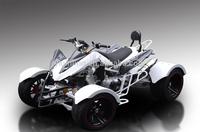 Racing Quad ATV 4Wheel Street Legal Dune Buggies