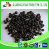 supply health care dry Blueberry powder / freeze dried Blueberry powder