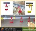 bebederos automáticos para los pollos