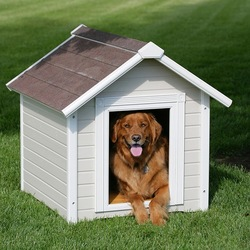 Factory best selling outdoor dog kennel