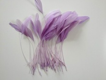 Lilac stripped coque feather,millinery feathers,feather decoration in size 6-8''