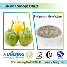 Halal,Kosher & ISO certificate Garcinia Cambogia Extract