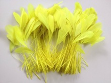 Fluorescent yellow color stripped coque feather,millinery feathers,feather decoration in size 6-8''