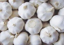 fresh natural garlic with good quality for thailand Russian 500USD in china,2014 fresh garlic