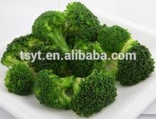 2014 China iqf frozen broccoli cut in 10kg carton exporter supplier