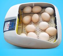 2015 New Product Mujia full mini incubator farm machinery egg hatcher
