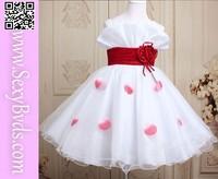 Beautiful girls wholesale kids tutu dress
