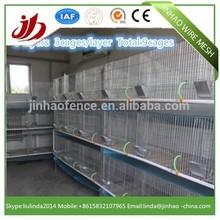 Baja precio de conejo jaula de la capa para la venta( jinhao fabricante)