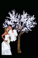 waterpoof white led cherry tree para la decoración de la boda led del árbol de la boda
