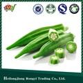 2014 verdure verdi fresche gombo