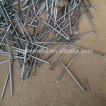 China ISO factory Common Nails/cement nail alibaba (whats app:+8615131437856)