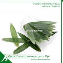 Japanese(restaurant)Sushi Packing cuisine packing Natural Green Bamboo Leaves dinner ware