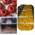 Cherry Pit eliminar de la máquina / de oliva Pit de extracción de la máquina con buena calidad ( cuál es la aplicación : 0086 - 15713917781 )