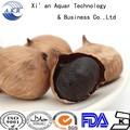 China 2014 bnp fornece superior de alta qualidade 100% preto sementes de alho