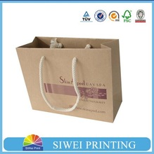 China factory custom made famous brand paper bag