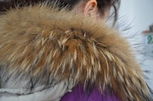 Genuine Winter Natural Raccoon Dog Fur For Garment
