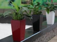ceramic similar colorful bright new style plant pots