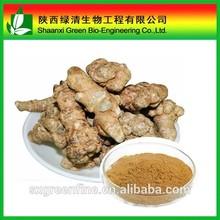 Top quality Sanchi P.E. with Notoginsenosides powder