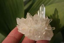 top qualidade natural rock quartz crystal cachos de uva para a venda
