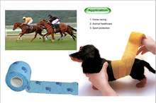 FDA approved Vetwrap for horse with best price